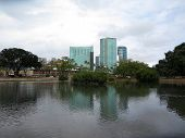 Pond In Ala Moana Beach Park With Condominiums Towers Across The Street