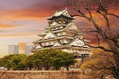 Osaka castle, one of the famous castle in Japan, Asia.
