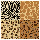 Set of Animal Patterns - for design and scrapbook - in vector
