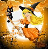 Witch and her cat familiar flying on broomstic