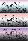 Meadow flowers, grass and butterfly at dawn