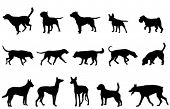 dogs collection silhouettes