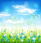 Background with grass and flowers. Vector eps 10.