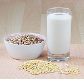 picture of soybean milk  - A glass of soy milk with a bowl of raw soybean and soybean seed - JPG