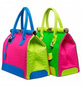 Two bright neon pink, blue and green bags with gold lock and ostrich texture leather isolated on whi