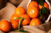 Clementine stilleven