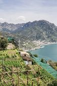 Amalfi Coast From Ravello