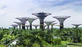 SINGAPORE - CIRCA MAY 2014: Gardens by the Bay in Singapore. Gardens by the Bay was crowned World Building of the Year at the World Architecture Festival 2012.