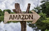Amazon wooden sign on a forest background