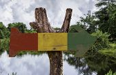 picture of guinness  - Guinea wooden sign with a forest background - JPG