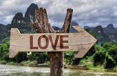 Love wooden sign with a forest background