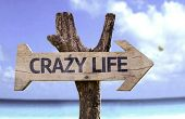 Crazy Life wooden sign with a beach on background