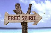 Free Spirit wooden sign with a beach on background
