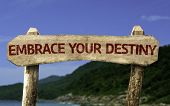 Embrace your Destiny wooden sign with a beach on background