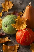 Three Pumpkins Of Different Colors On Wooden Background Strewn With Autumn Leaves