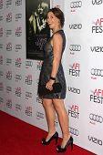 LOS ANGELES - NOV 6:  Ashley Williams at the AFI FEST 2014 Screening Of