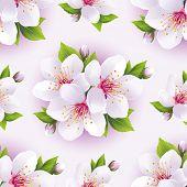 Beautiful Seamless Pattern With White Sakura