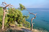 Greece, Halkidiki, Wild Landscape