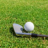 Putters And Ball On Grass. Close-up.