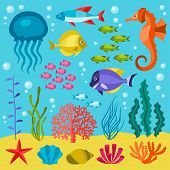 Marine life set of icons, objects and sea animals.