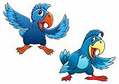 Cute blue cartoon parrot birds