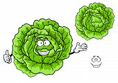 Happy green cartoon cabbage vegetable