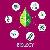 Biology flat concept design
