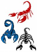 foto of scorpion  - Colored danger and aggressive scorpion icons showing the scorpion in different positions with the sting in its tail raised - JPG