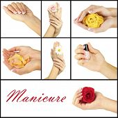 pic of french manicure  - Hands with french manicure isolated on white in collage - JPG