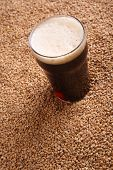 pic of malt  - Nonic pint glass of dark stout beer over malted barley grains - JPG