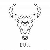 stock photo of cow skeleton  - bull skull - JPG