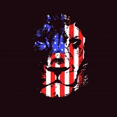 picture of lions-head  - Lion head with usa flag - JPG