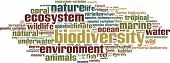 stock photo of biodiversity  - Biodiversity word cloud concept - JPG