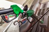 picture of fuel economy  - Refilling car fuel on the gas station - JPG