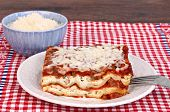 picture of shredded cheese  - One slice of homemade lasagna with a side bowl of grated parmesan cheese - JPG