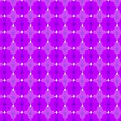 image of cosmos flowers  - violet cosmos seamless pattern background - JPG