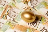 Golden Egg And Canadian Dollars