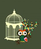 little owl and bird cage