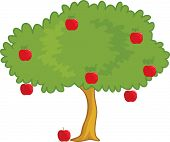 an illustration of a apple tree