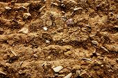clos-up of  Soil texture background.