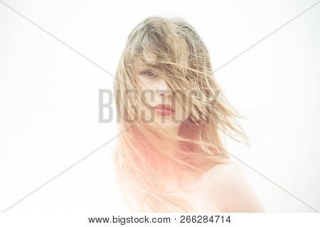 poster of Beauty Salon And Hairdresser. Girl With Lipstick On Lips. Hair Recover. Woman With Brittle Hair. Hai