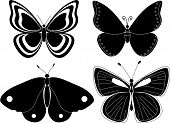 Four Butterfly Silhouettes