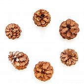 Flatlay With Pinecones Isolated On The White Background. Flatlay poster