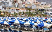 Umbrellas on the beach of Playa de las Americas. Tenerife, Canaries