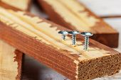 Screw Screwed Into A Wooden Bar. Close Up. Macro Photography. Object poster
