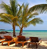 Family hotel on the tropical beach, palm tree, sea water and sky background