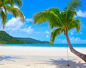 Summer nature scene of the beach. Dream vacations.
