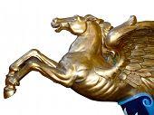the mythological horse winged pegasus flying isolated on white background