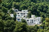Establecimiento de nuevas casas blancas en la madera de Pelion, Grecia