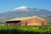 blurred yellows flower and abandoned red barn under the volcano Etna, Italy